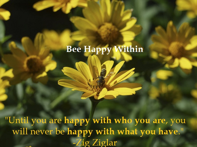 bee happy finding happiness moive finding happiness movie