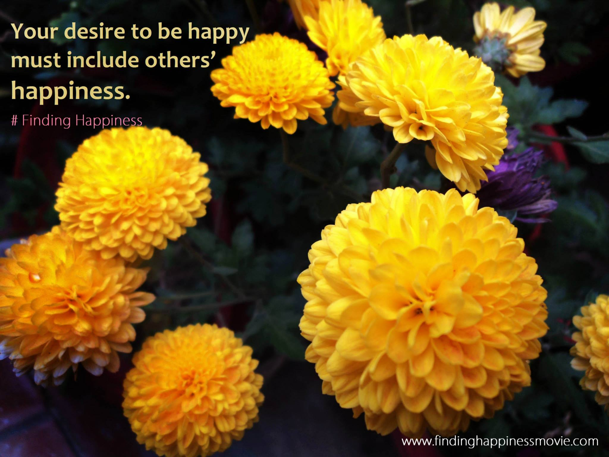 Find Your Happiness Top 7 Tips For How To Be Happy